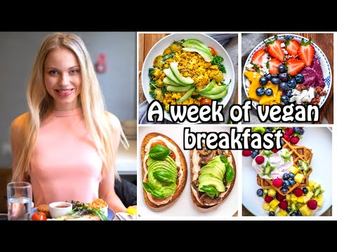 What I Ate As A Model On The Working Day In London Healthy Vegan Recipes Uk Youtube