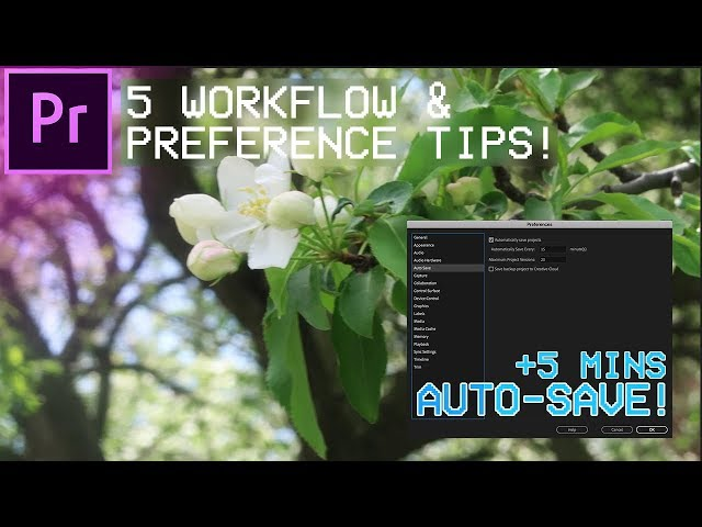 5 Adobe Premiere Pro Workflow & Preference Tips you might not Know about!