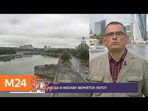 Пасмурная погода продержится в Москве до понедельника - Москва 24