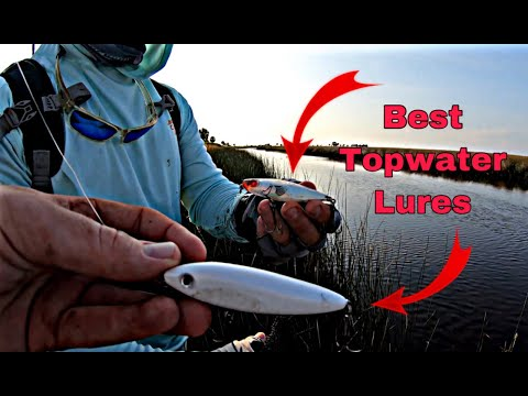 3 Best TOPWATER Lures For Saltwater Fishing