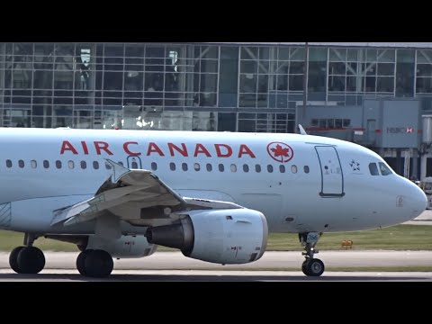 All Nippon Airlines Boeing 767-381 | Plane Spotting Arrivals (1080HD) | Crosswind Landings
