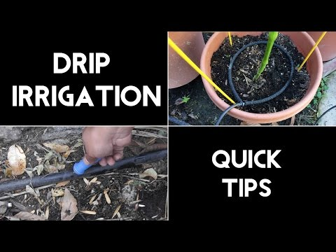 Drip Irrigation Quick Tips