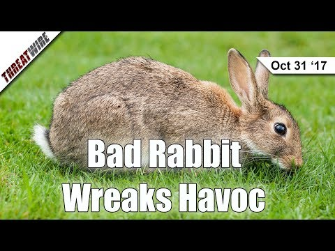 Bad Rabbit Ransomware Spreads With NSA EternalRomance- ThreatWire
