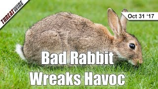 Bad Rabbit Ransomware Spreads with NSA EternalRomance- ThreatWire