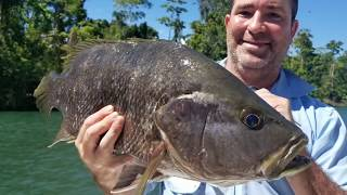 Black Bass & Spottail Bass Adventure - Baia Sportfishing PNG