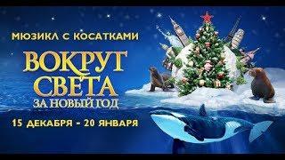 Мюзикл на воде «Вокруг света за Новый год»