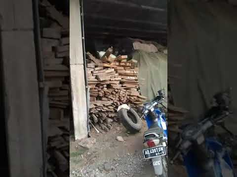 Wood Pellet Factory Operation Video-BSR Pellet Mill +84962537439 bsrwood.vn BSR Wood Co., Ltd