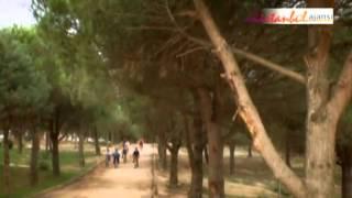 Sultangazi Kent Ormanı
