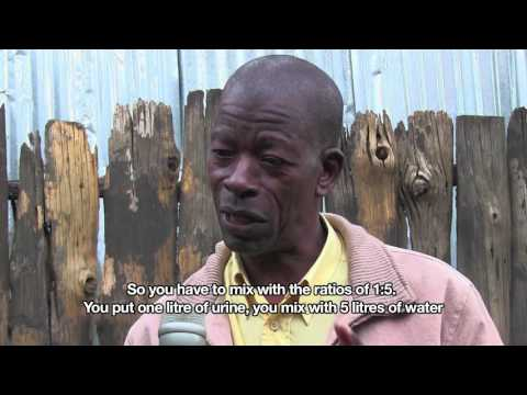 Rabbit urine for organic farming | African Slum Journal