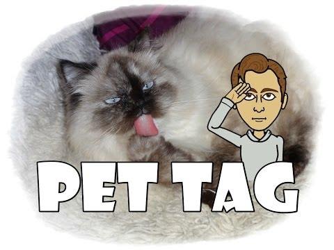ТАГ-Моят домашен любимец! Пеци ме игнорира! .... {Pet TAG}