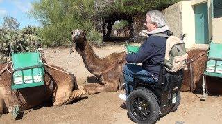 Camel Trophy 2014 Rollstuhl