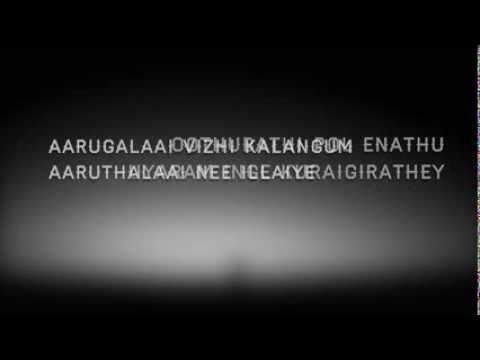 Thanimayile - Ivan Vera Maathiri  with Lyrics (Tamil Sad Song 2013)