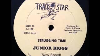 Junior Biggs - Struggling Time