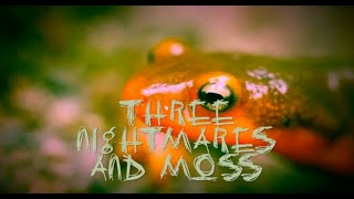 Three Nightmares and Moss, a poem by Dudgrick Bevins for NaPoWriMo 2020: Day 3