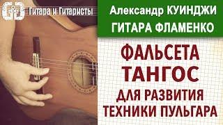 Испанская гитара фламенко. Урок 19 (Не Дидюля)