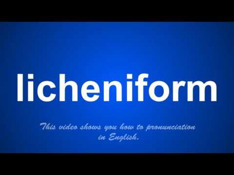 the correct pronunciation of lieutenancy in English.