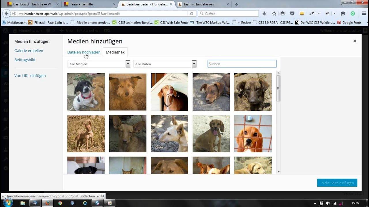 wordpress seiteninhalt mit page builder anlegen - YouTube