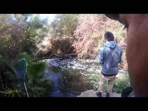 Balboa Park, LA River fishing (08/10/2016)