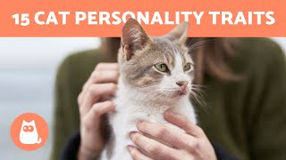 15 Best Cat PERSONALITY Traits  Do You Know them ALL?
