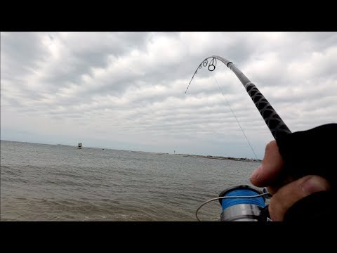Finally Back Saltwater Fishing!! (GATOR BLUE FISH!) - Long Island NY