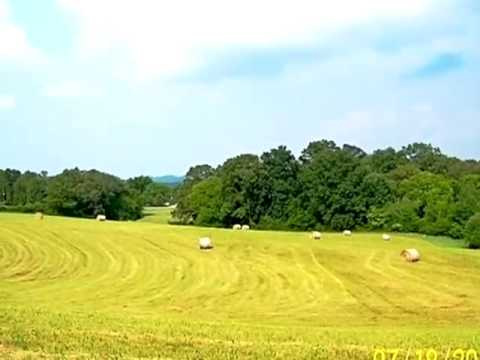 Homes for Sale - Pond Hill Rd, Lot 5 - Niota, TN 37826 - William Howe