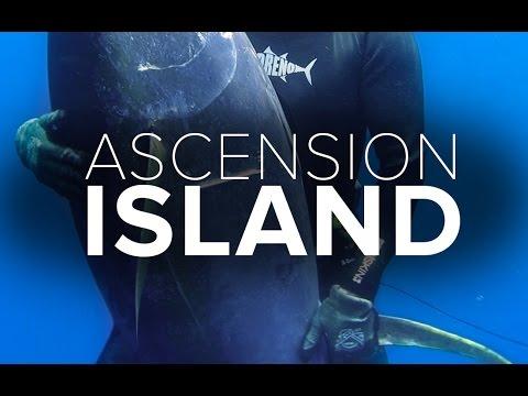 Spearfishing Ascension Island (100kg Yellowfin Tuna) | ADRENO