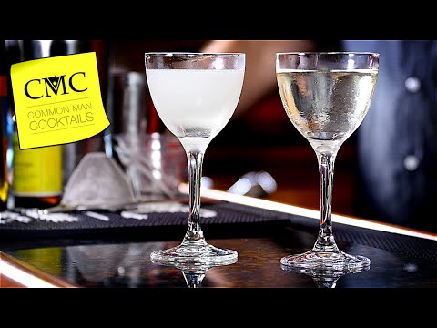 Vodka Martini, Shaken or Stirred Experiment / Which is Better?