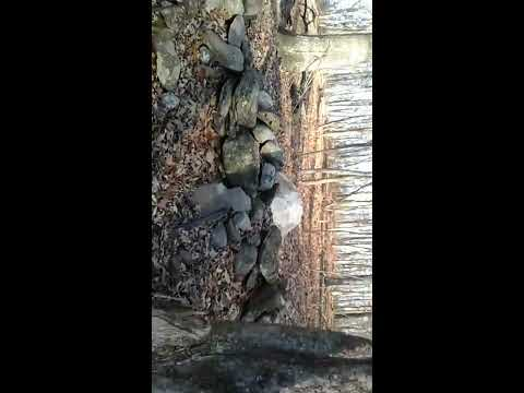 Ancient New England - Stone Wall Settlement Site CT pt.2