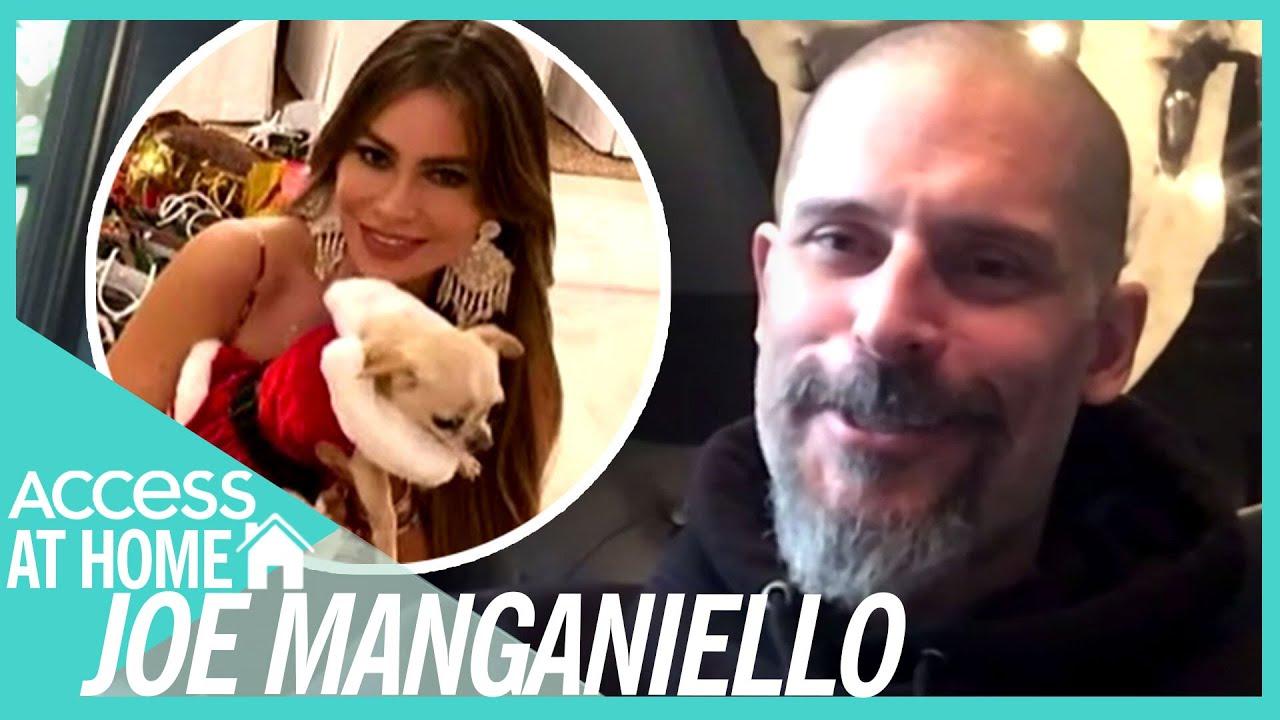 Joe Manganiello Says Sofia Vergara Loves To Dress Up Their Dog Bubbles