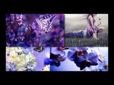Enya - Sumiregusa ( Wild Violet )