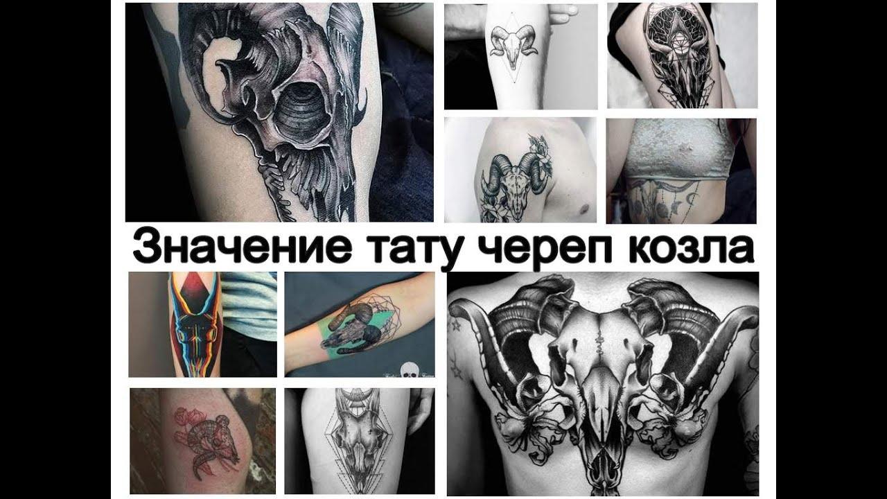 Значение тату череп козла - особенности рисунка и фото примеры для tattoo-photo.ru