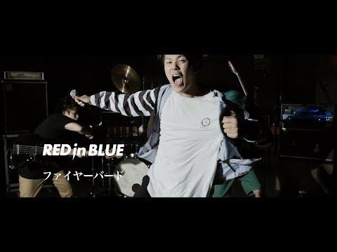 RED in BLUE - ファイヤーバード MV