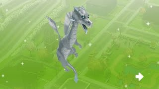 Pet Dragons- Sims Freeplay Witches & Wizards Update
