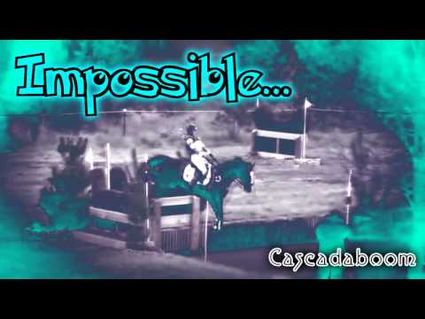 Impossible Is Not A Word