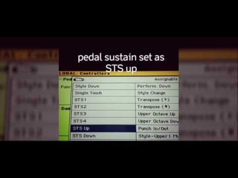 Sesal Tak Berilmu sampling - karaoke pa600 manual style