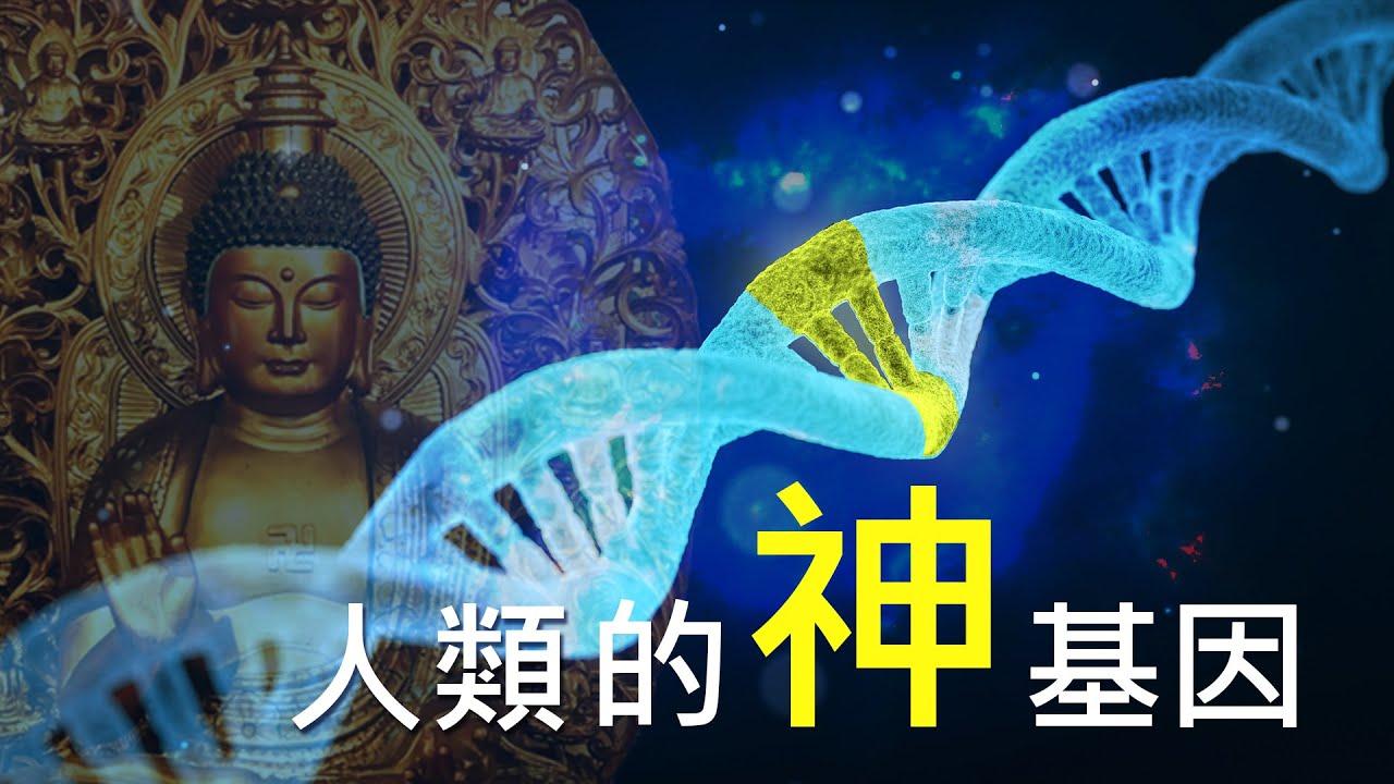 發現你身上最特殊的基因:「神基因」