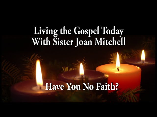 Living the Gospel Today - Have You No Faith?