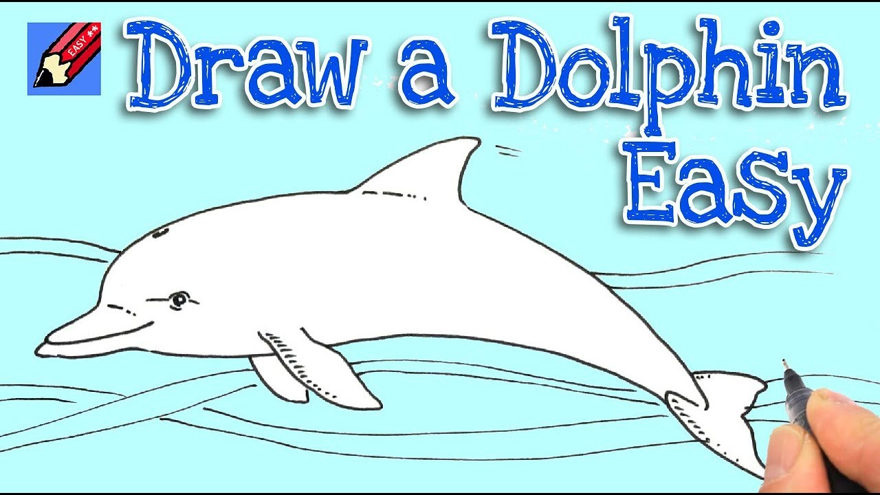 How To Draw A Dolphin Real Easy Youtube
