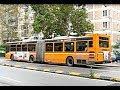 [Mezzi Pubblici] Autobus AMAT Palermo (parte 9)