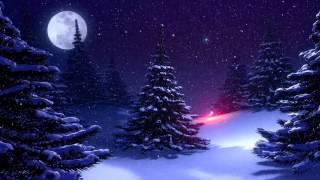 ♛Очень красивая ёлка, Рождество, футаж, скачать бесплатно HD