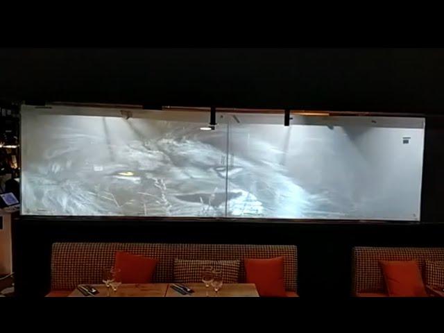 VINILE® & Restaurante LION (cocina proyección)