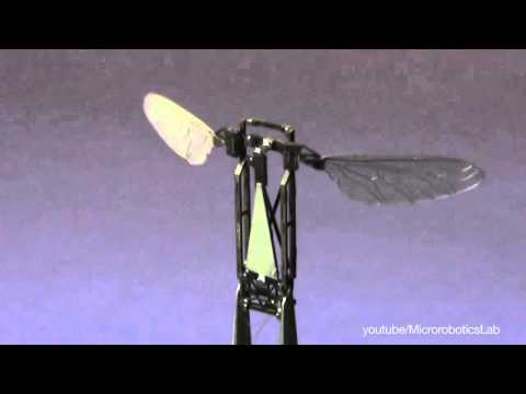 Flying Robot Based on the Movement of a Jellyfish