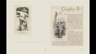 Adventures of Huckleberry Finn by Mark Twain - AudioBook Chapter 1 - 5