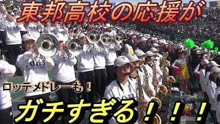 東邦高校の応援(ブラバン)が凄すぎる!あまりの迫力に見入ってしまう方も沢山いらっしゃいました! thumbnail