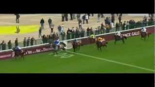 Qatar Prix Du Cadran 2012_Molly Malone_U.Rispoli