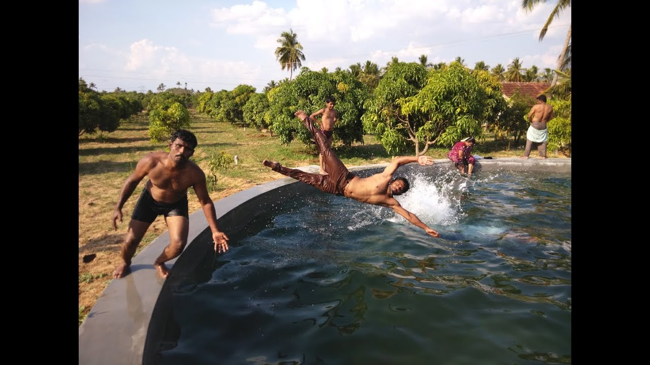 Boys Swimming In Natural Swimming Pool In My Village Youtube