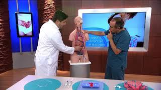 Sanguíneos y el el pecho en estómago vasos rotos