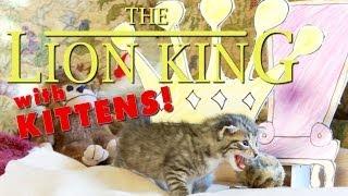 The Lion King (Cute Kitten Version)