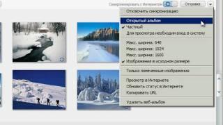 Налаштування конфіденційності Google, Picasa (20/20)