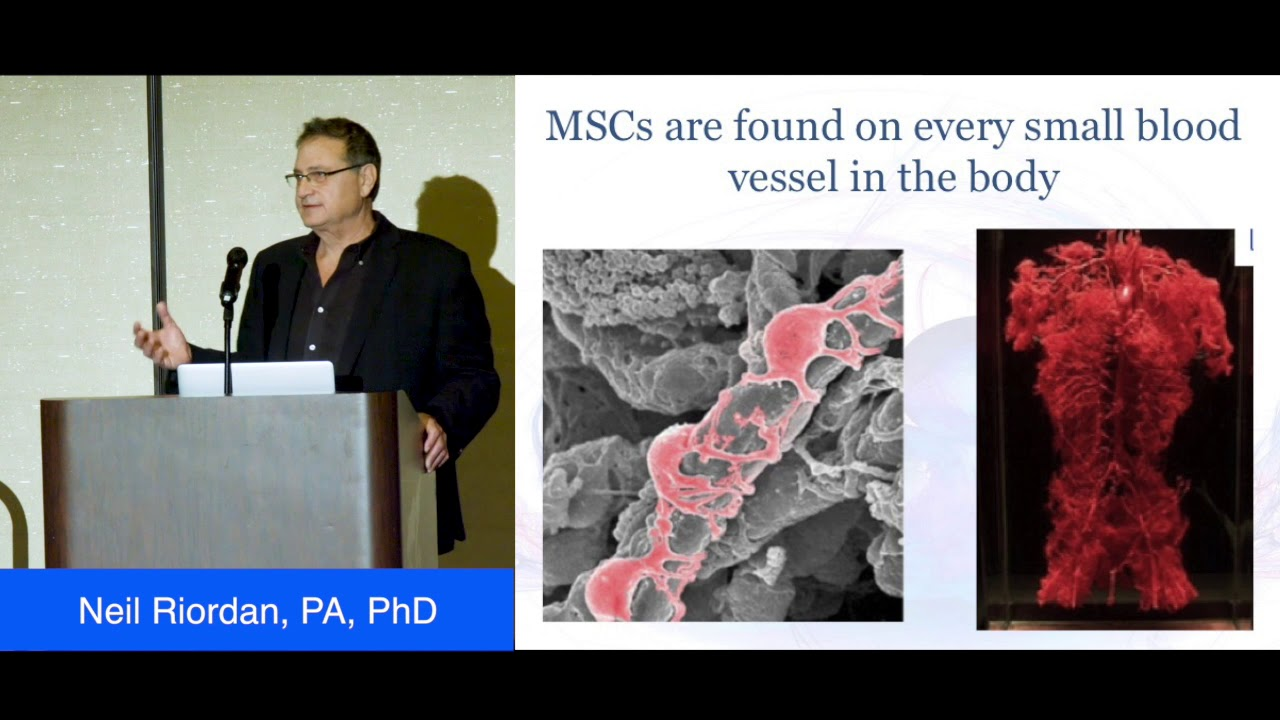 Stem Cell Institute Panama - Stem Cell Therapy - Stem Cell